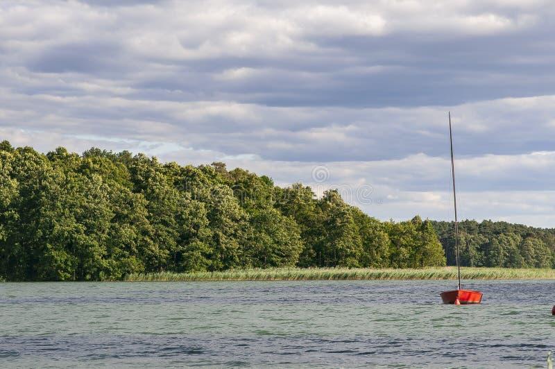 Fartyg på sjön i solen med skogen i bakgrunden royaltyfri bild