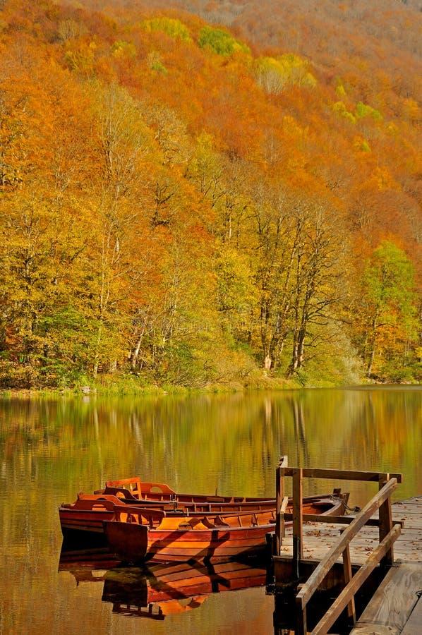 Fartyg på sjön med skogen i bakgrund royaltyfri bild