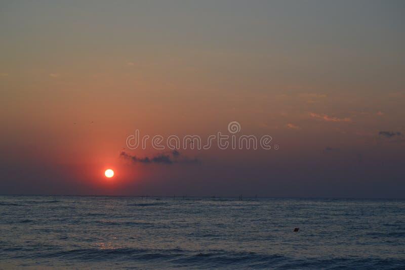 fartyg som fiskar havsseagullskyen, soars soluppgången arkivbild