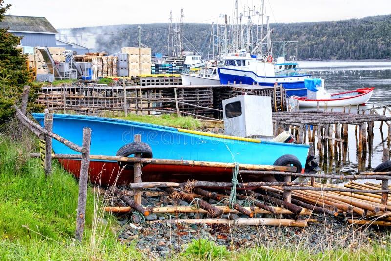 fartyg som fiskar newfoundland royaltyfria bilder