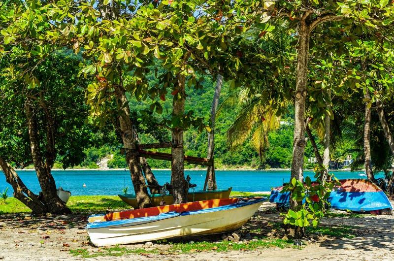 Fartyg som ligger i sanden under träd på en strand på Guadeloupe royaltyfria foton