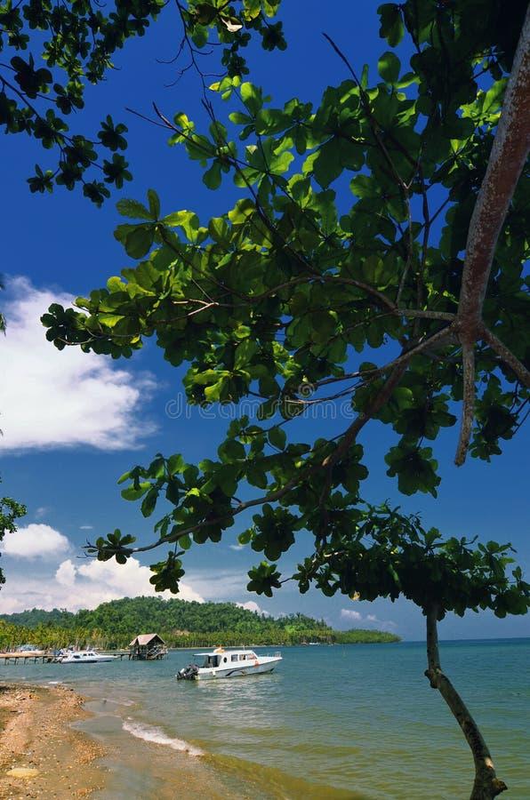 Fartygdock på den tropiska ön royaltyfri fotografi