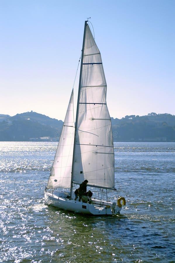 fartyget seglar arkivbilder