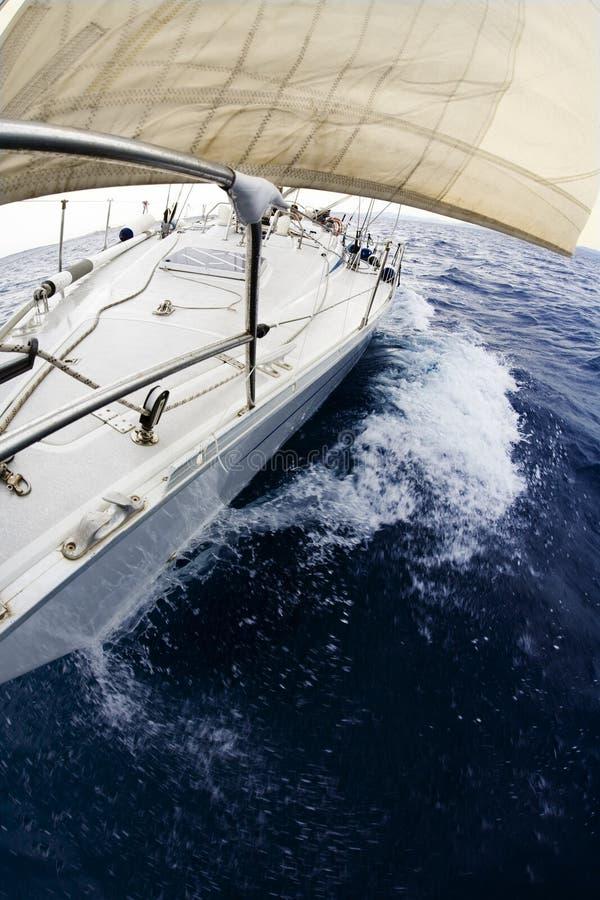 fartyget seglar royaltyfri bild