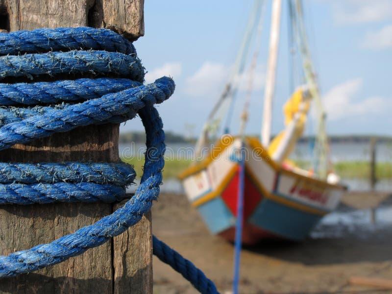 fartygfiske arkivfoton