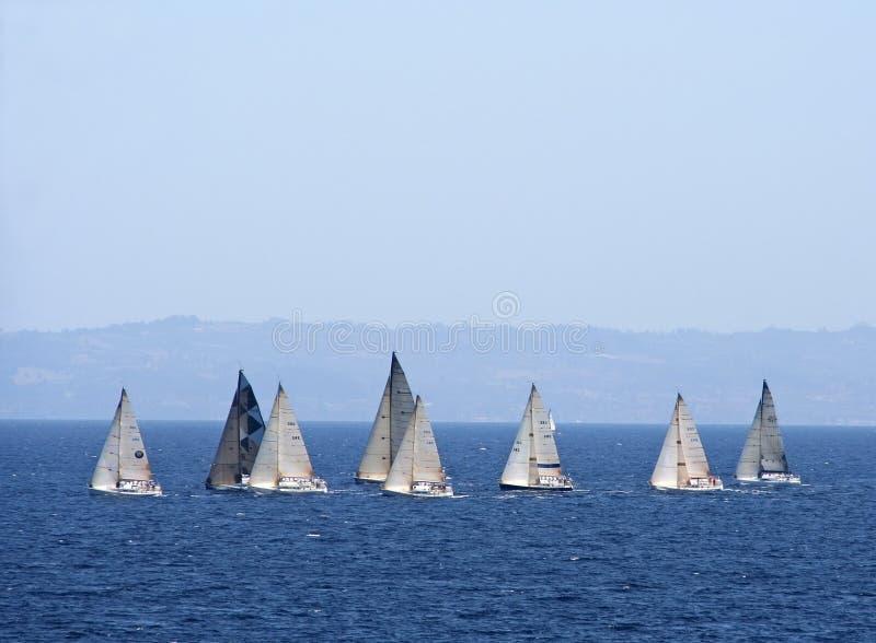 fartygracesegling fotografering för bildbyråer