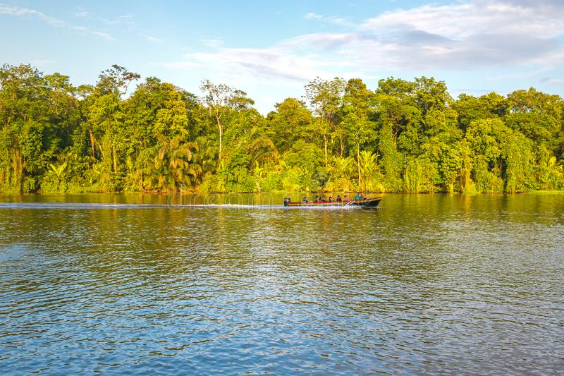 Fartygtur p? den Tortuguero floden, Costa Rica royaltyfri bild