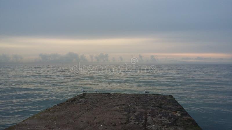 Fartygturer, som kommer med hälsa, ny luft på kusten, royaltyfri fotografi