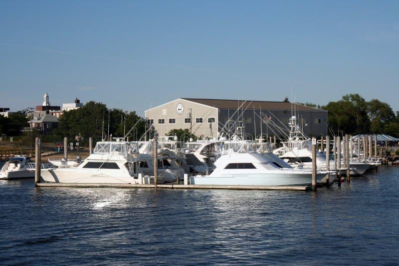 Download Fartyguddtorsk arkivfoto. Bild av vatten, vitt, gyckel - 288660