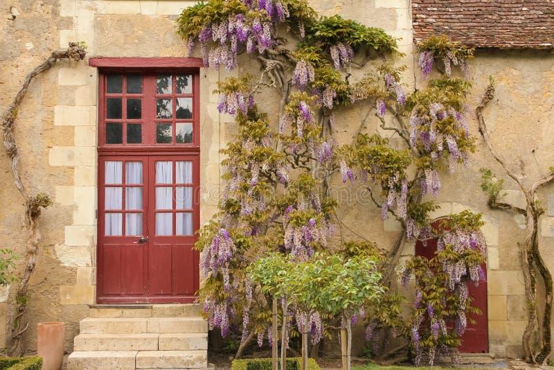 Fasad av ett gammalt lantgårdhus med purpurfärgad wisteria Chenonceaux france fotografering för bildbyråer