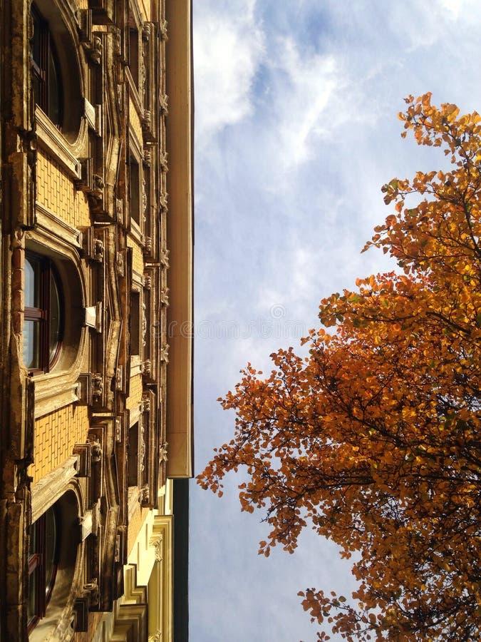 Fasada budynek przeciw niebieskim niebom zdjęcia royalty free