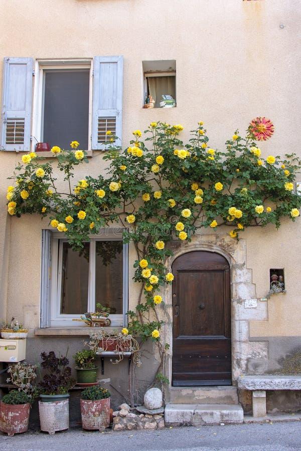 Fasada stary dom z żółtym rosebush obrazy royalty free