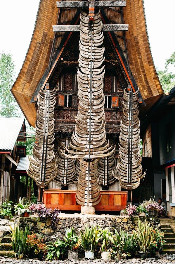 Fasada tradycyjny torajan budynek tongkonan z mnóstwo bawolimi rogami indonesia Sulawesi tana toraja fotografia royalty free