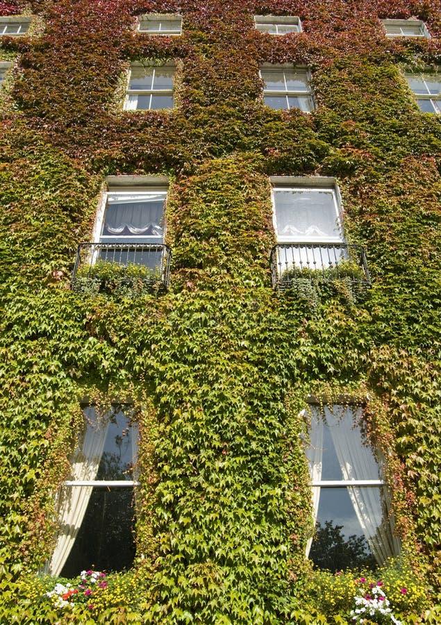 fasadowy zielony dom opuszczać czerwień zdjęcia stock