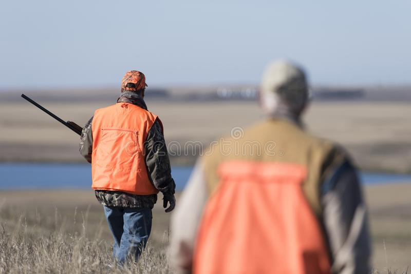Fasanjägare i fält i North Dakota arkivbild