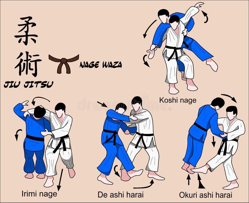 Fascia marrone di Jiu Jitsu illustrazione di stock