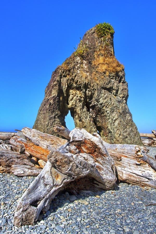 Fascinatie van Ruby Beach op Vreedzame Oceaankust royalty-vrije stock afbeelding