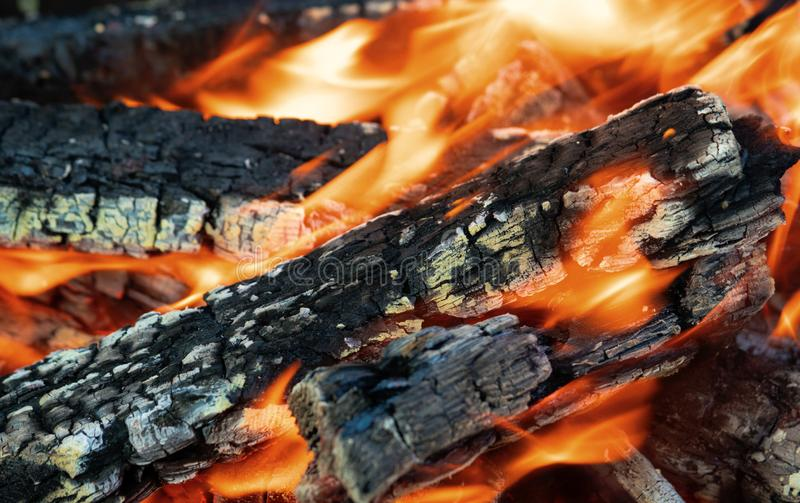 Fascinating bonfire, with glowing wood and wriggling flames. The texture of the burning tree stock images