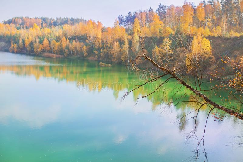 Fascinating pond. Beautiful bright autumn landscape. Yellow trees in enchanting forest. Leaves fall from branches on sunny autumn stock photos