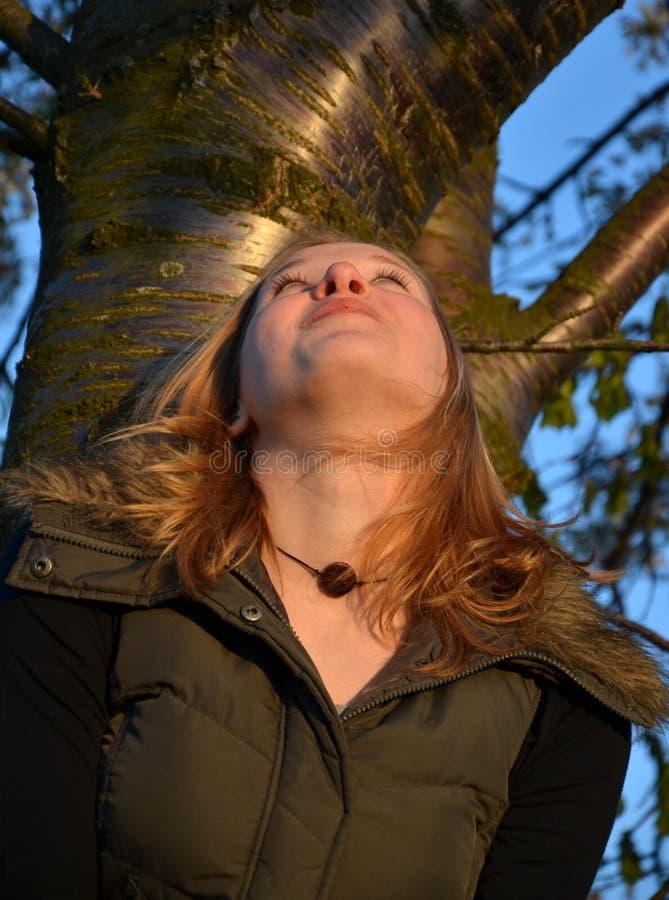 Fascination par l'arbre images stock