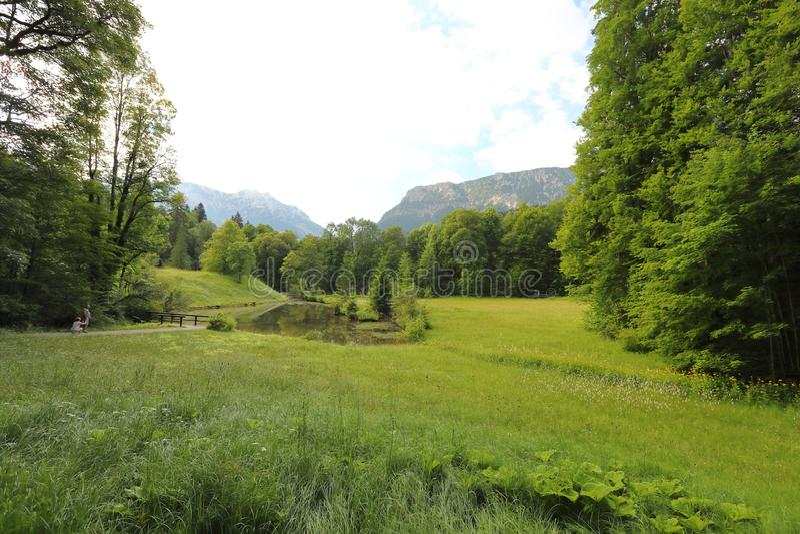 Fascination, types de grand-format de prés verts, bords et les bois alpins les collines dans l'été image libre de droits