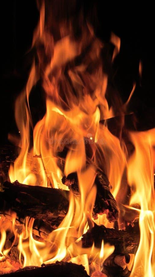 Fascinera den turist- lägereldflamman royaltyfria bilder