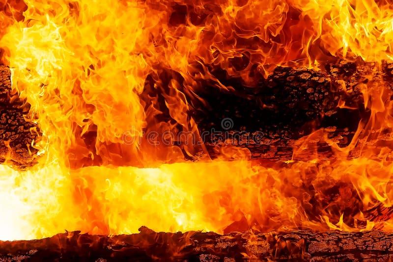 Fascinerande grafisk detalj av bränningbrand som konsumerar träjournaler arkivbilder