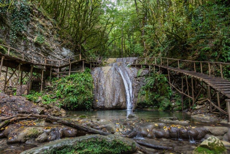Fascynująca podróż przez doliny siklawy w boxwood lesie, Krasnodar region, Rosja obrazy stock