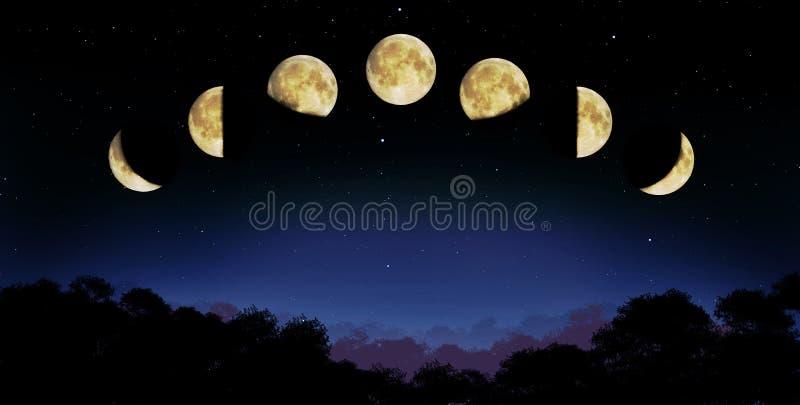 Fase da lua ilustração stock
