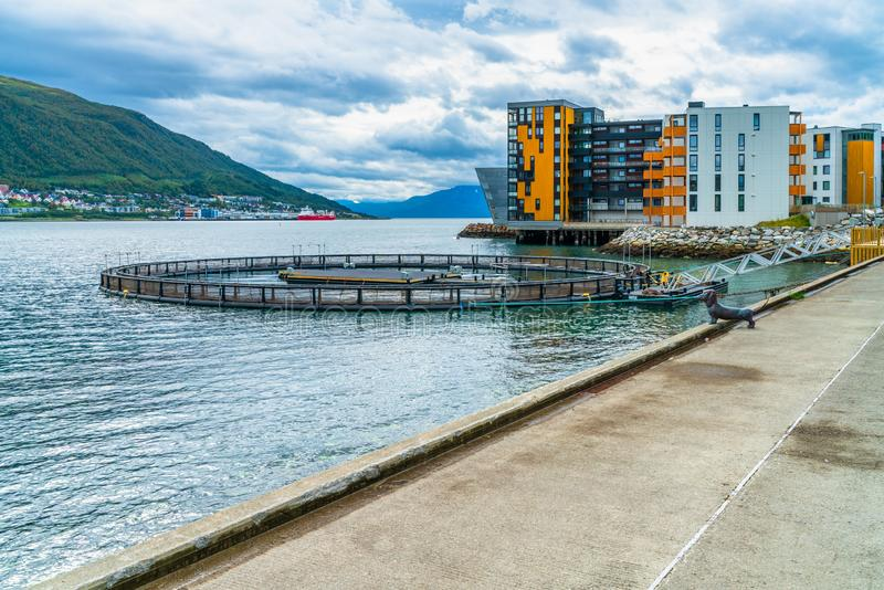 Fase no oceano, Tromso do número 4 de Halogaland Teatre, Noruega fotos de stock royalty free