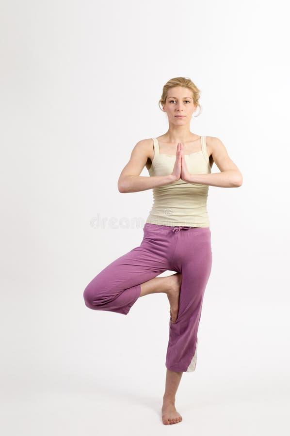 Fase uma da árvore da ioga fotos de stock royalty free