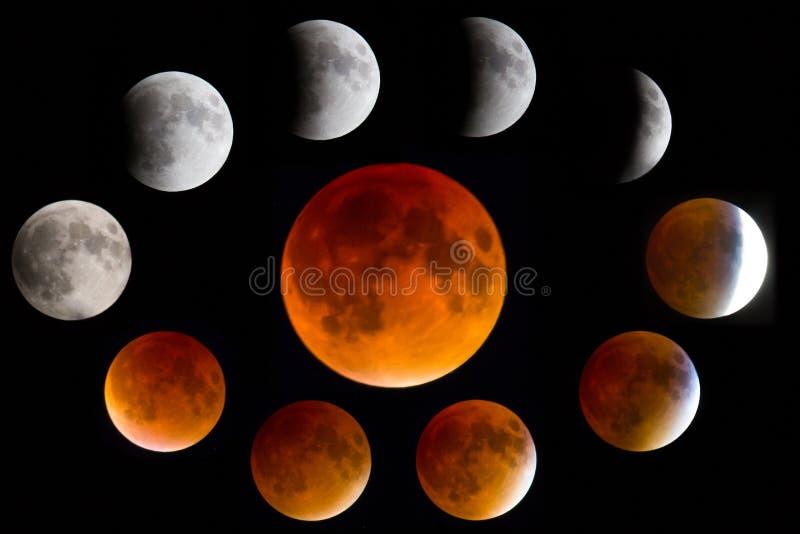 Faser av en mån- blodmåneförmörkelse royaltyfri fotografi