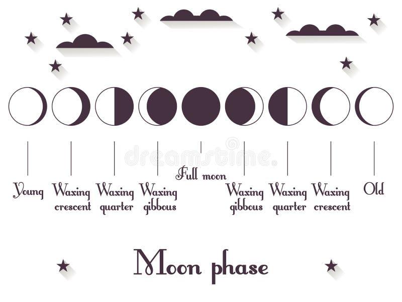 Faserna av månen Helhetscirkuleringen från den nya månen till mycket vektor vektor illustrationer