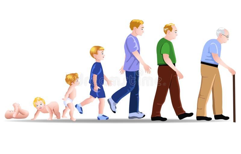 Fases do desenvolvimento do homem ilustração do vetor