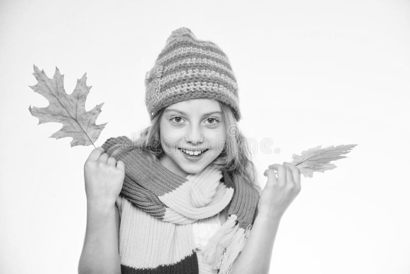 Fashion accessory concept. Fashion trend concept. Girl cute face wear fashion knitted hat and scarf hold fallen leaves stock images