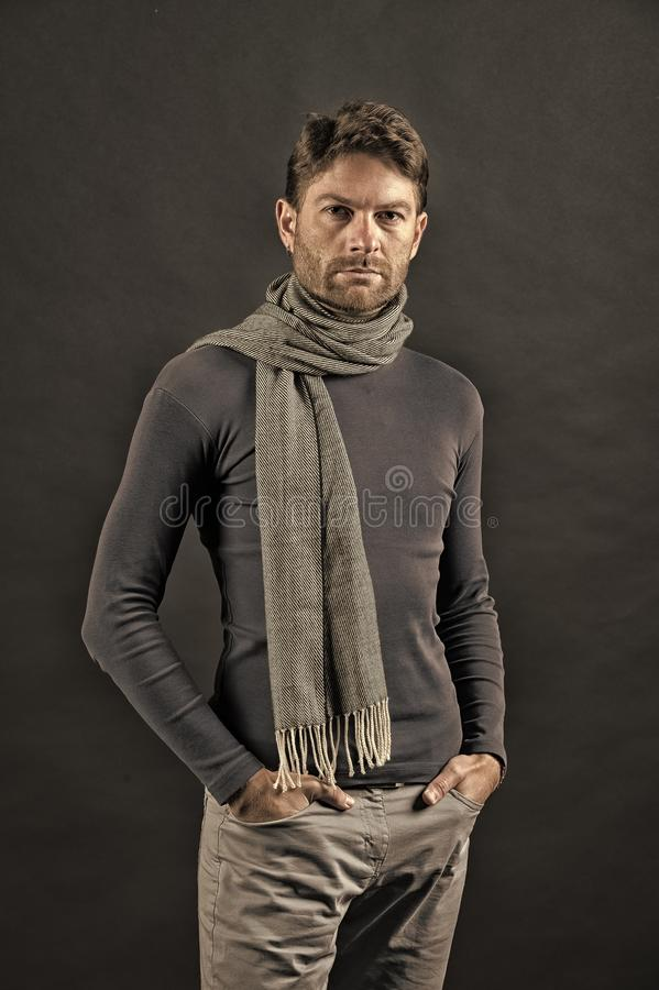 Fashion, accessory, style. Macho in sweater, scarf with hands in pockets. Barber salon, barbershop. Grooming, male beauty concept. Man with beard on unshaven stock photography