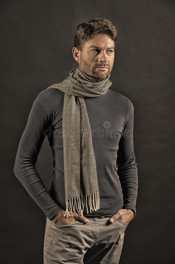 Fashion, accessory, style. Man with beard on unshaven face on grey background. Barber salon, barbershop. Macho in sweater, scarf with hands in pockets royalty free stock photo