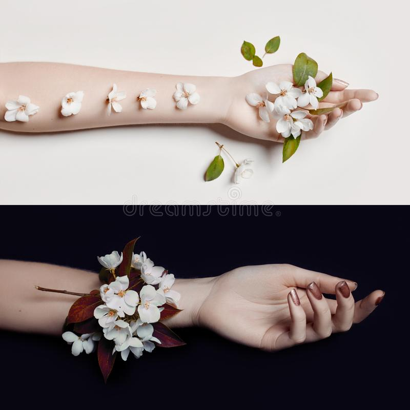 Fashion art hand woman in summer time and flowers on her hand wi. Th bright contrasting makeup. Creative beauty photo hand girls sitting at table on contrasting stock image