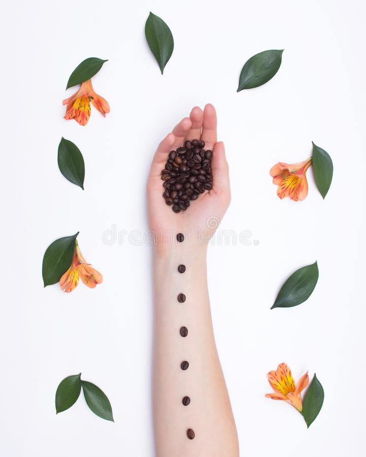 Fashion art hands natural cosmetics girl coffee beans and hibiscus flowers with petals, romantic, fresh. Fashion art hands natural cosmetics girl coffee beans stock photo