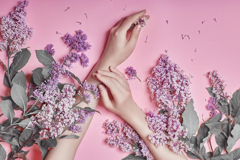 Fashion art hands natural cosmetics women, bright purple lilac flowers in hand with bright contrast makeup, hand care. Creative. Beauty photo of a girl sitting stock photography