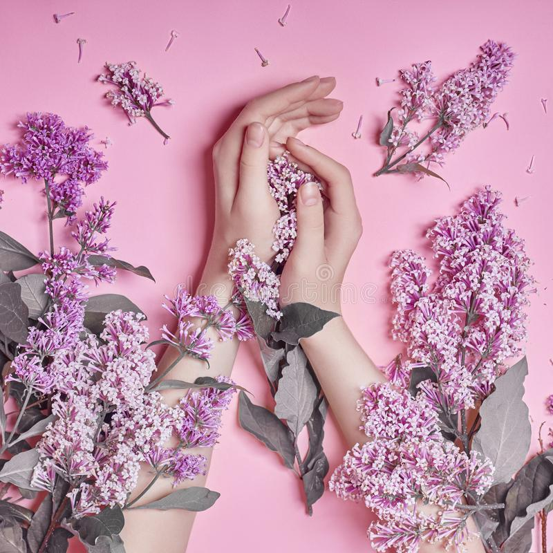 Fashion art hands natural cosmetics women, bright purple lilac flowers in hand with bright contrast makeup, hand care. Creative. Beauty photo of a girl sitting royalty free stock photography