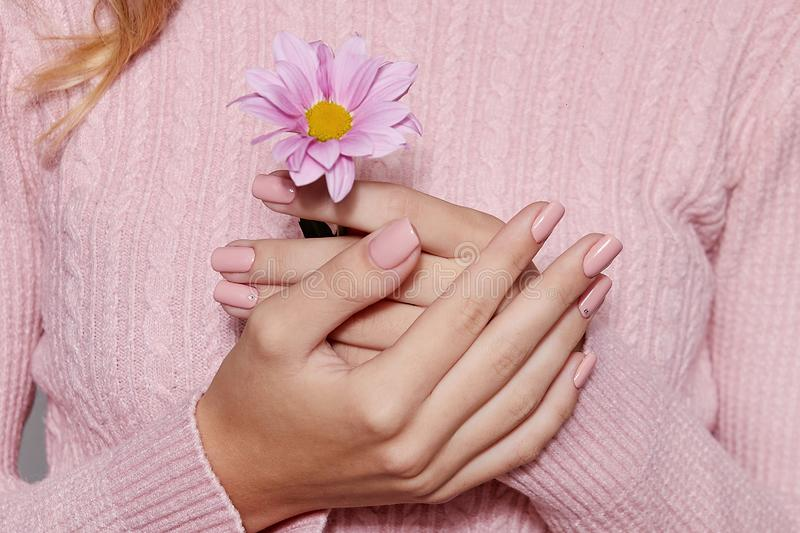 Fashion art skin care of hands and pink flowers in hands of women.  stock photos