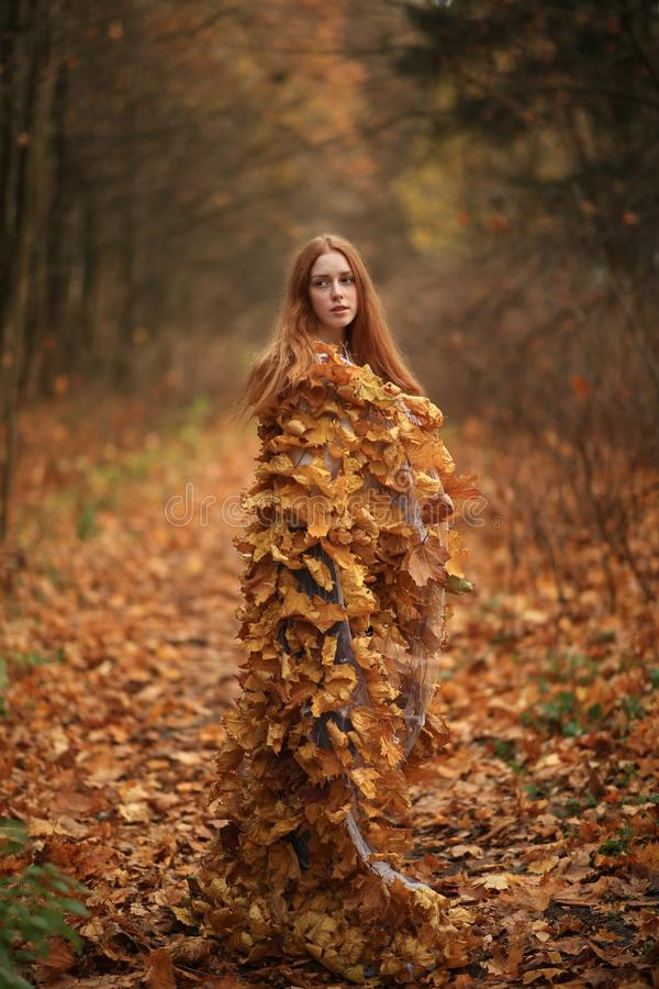 Free Fashion Autumn Model, Fall Leaves Dress, Beauty Girl Royalty Free Stock Photo - 155214665