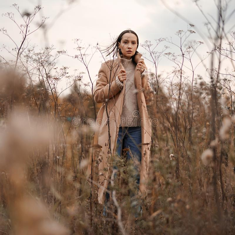 Fashion beautiful lady in autumn landscape stock images