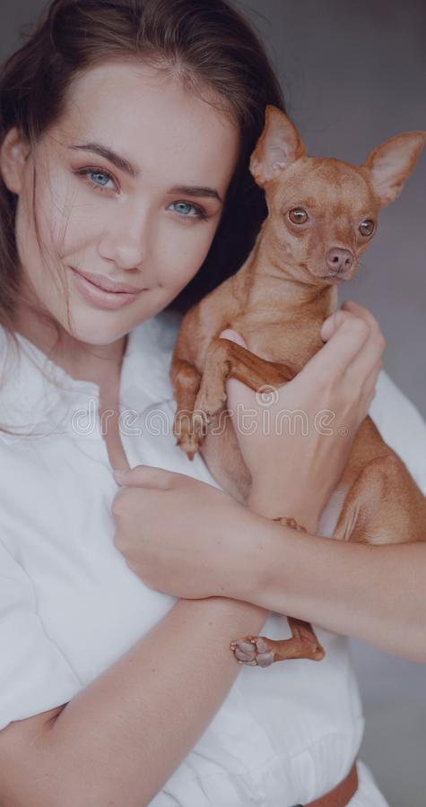 Fashion portrait of beautiful girl with dog royalty free stock images