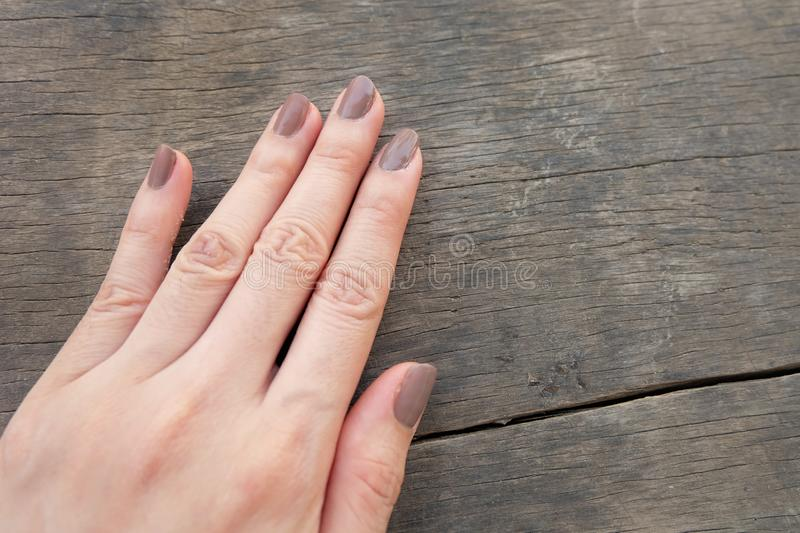 Fashion Brown Manicure Nail. Female's Hand Nails Polish on the Wood Background. Great for Any Use stock photo