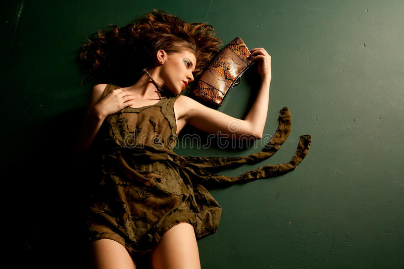 Download Fashion Girl Stock Images - Image: 12143284
