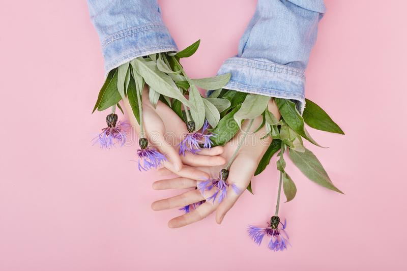 Fashion hand art wildflowers grow from sleeves natural cosmetics women, beautiful hand flowers with bright contrast makeup, hand. Care. Creative beauty photo stock image