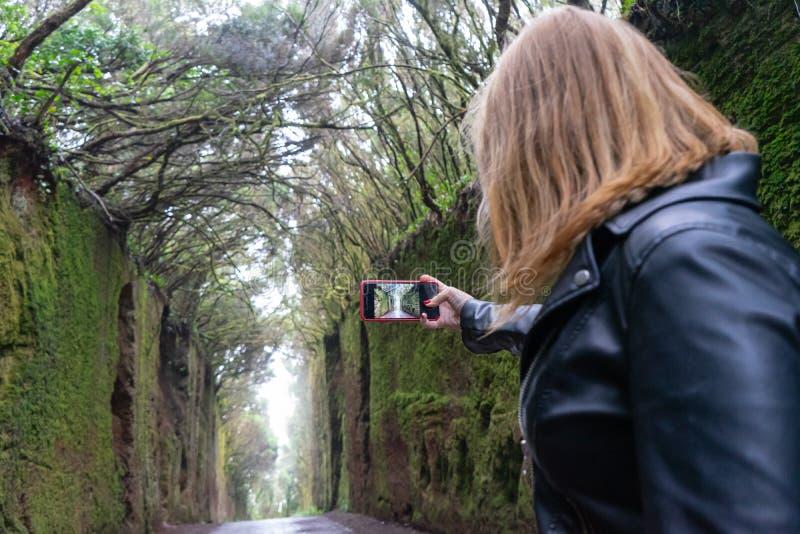 Fashion Lady berühren den LCD-Bildschirm des Telefons zu machen und Schnappschuss der Moos in der Wand der Erfahrung im Regenwald lizenzfreies stockfoto