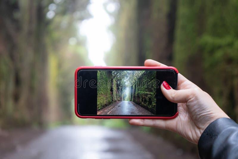Fashion Lady berühren den LCD-Bildschirm des Telefons zu machen und Schnappschuss der Moos in der Wand der Erfahrung im Regenwald lizenzfreie stockfotos